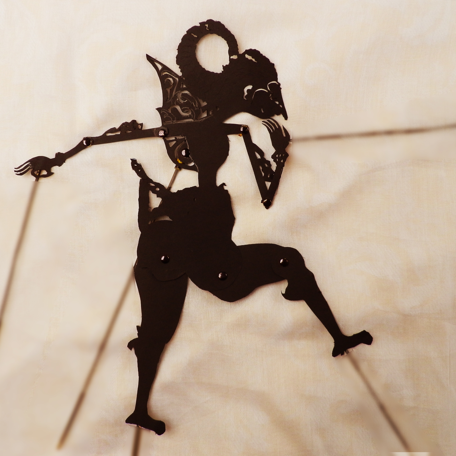 Painting With Light-Shadow Puppets