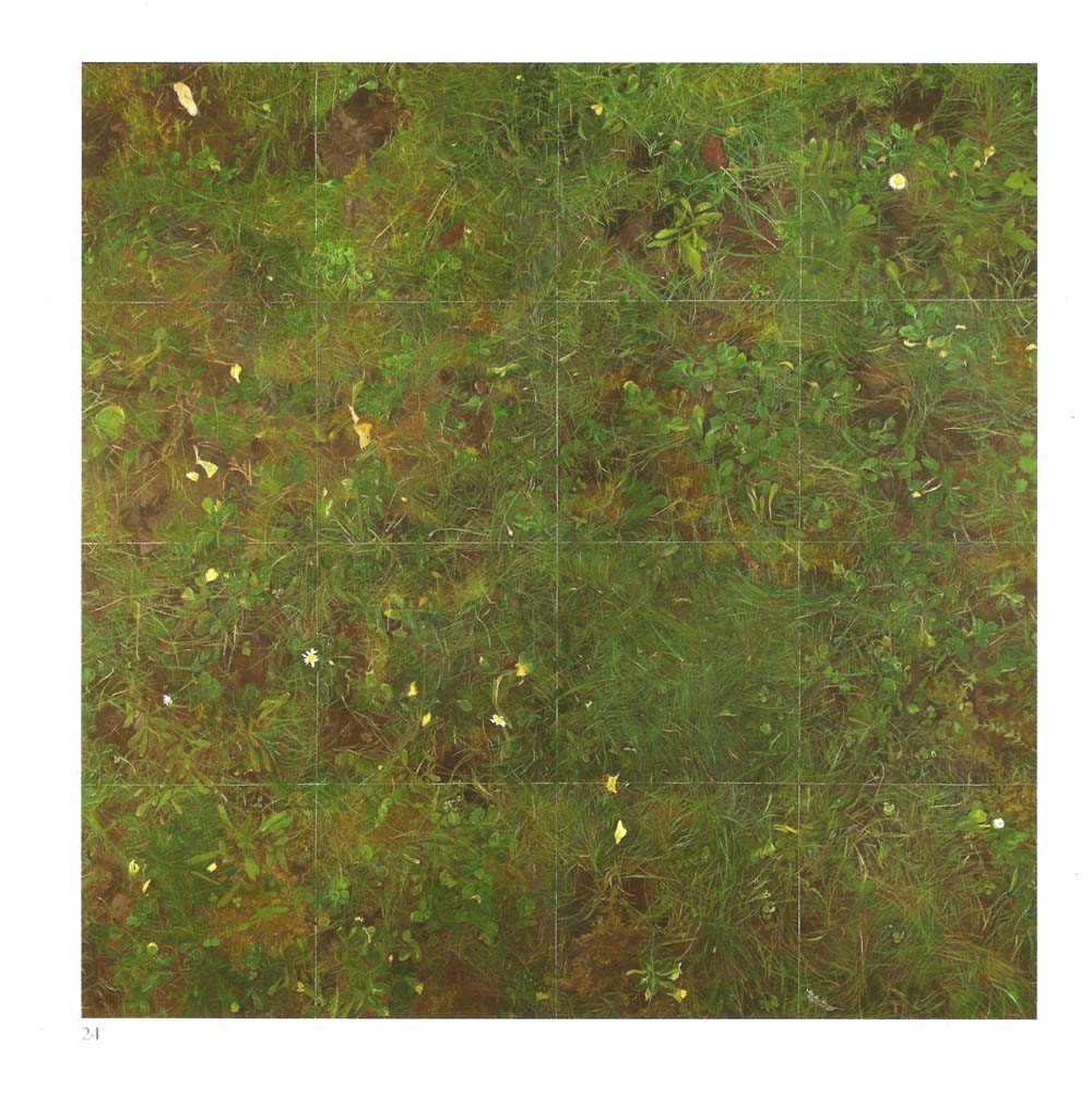 Our Land. Sample square of Common Land Grass - Jill Eastland
